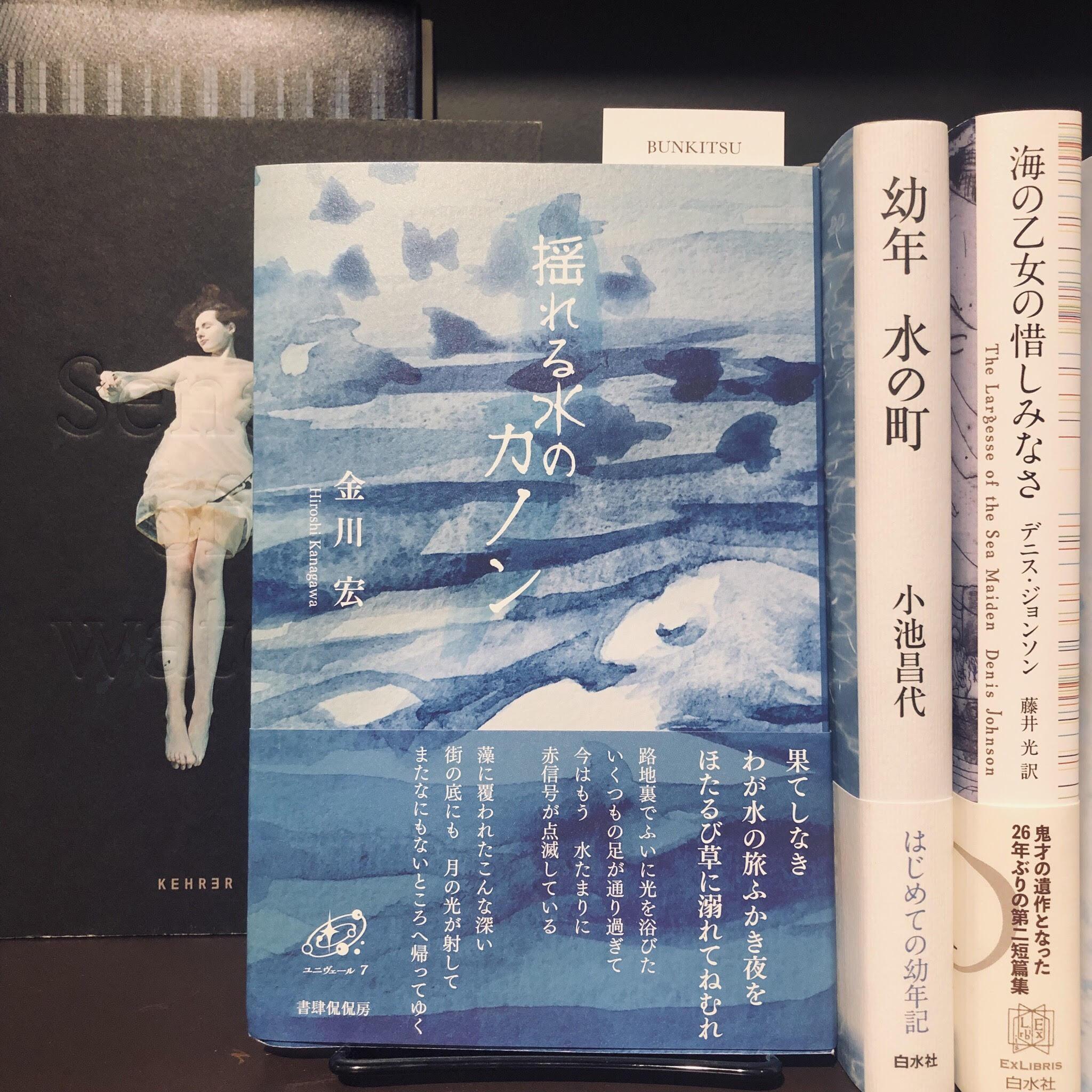 金川宏『揺れる水のカノン』(書肆侃侃房)
