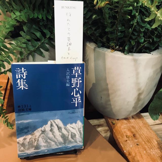 入沢康夫編『草野心平詩集』(岩波書店)