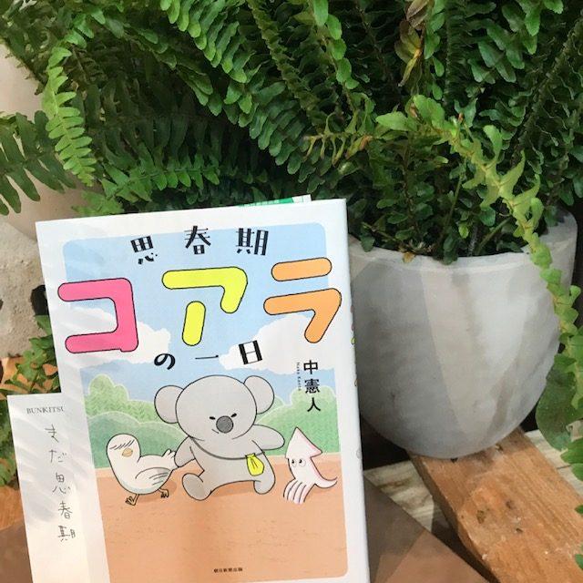 中憲人『思春期コアラの一日』(朝日新聞出版社)