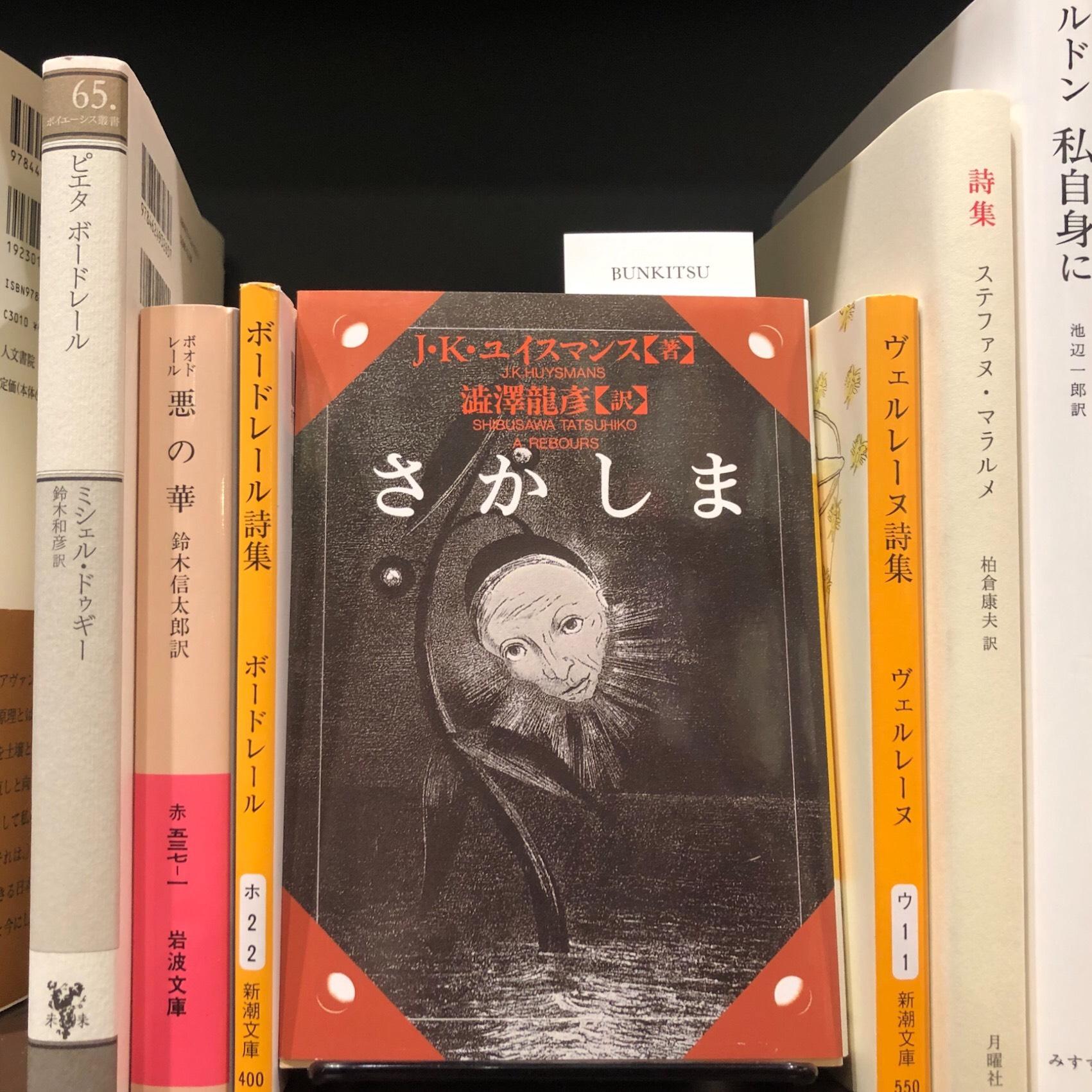 J.K. ユイスマンス『さかしま』(河出書房新社)