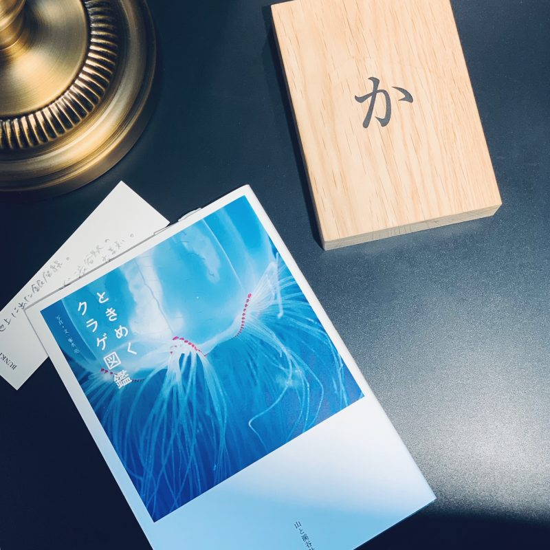 峯水亮『ときめくクラゲ図鑑』(山と渓谷社)