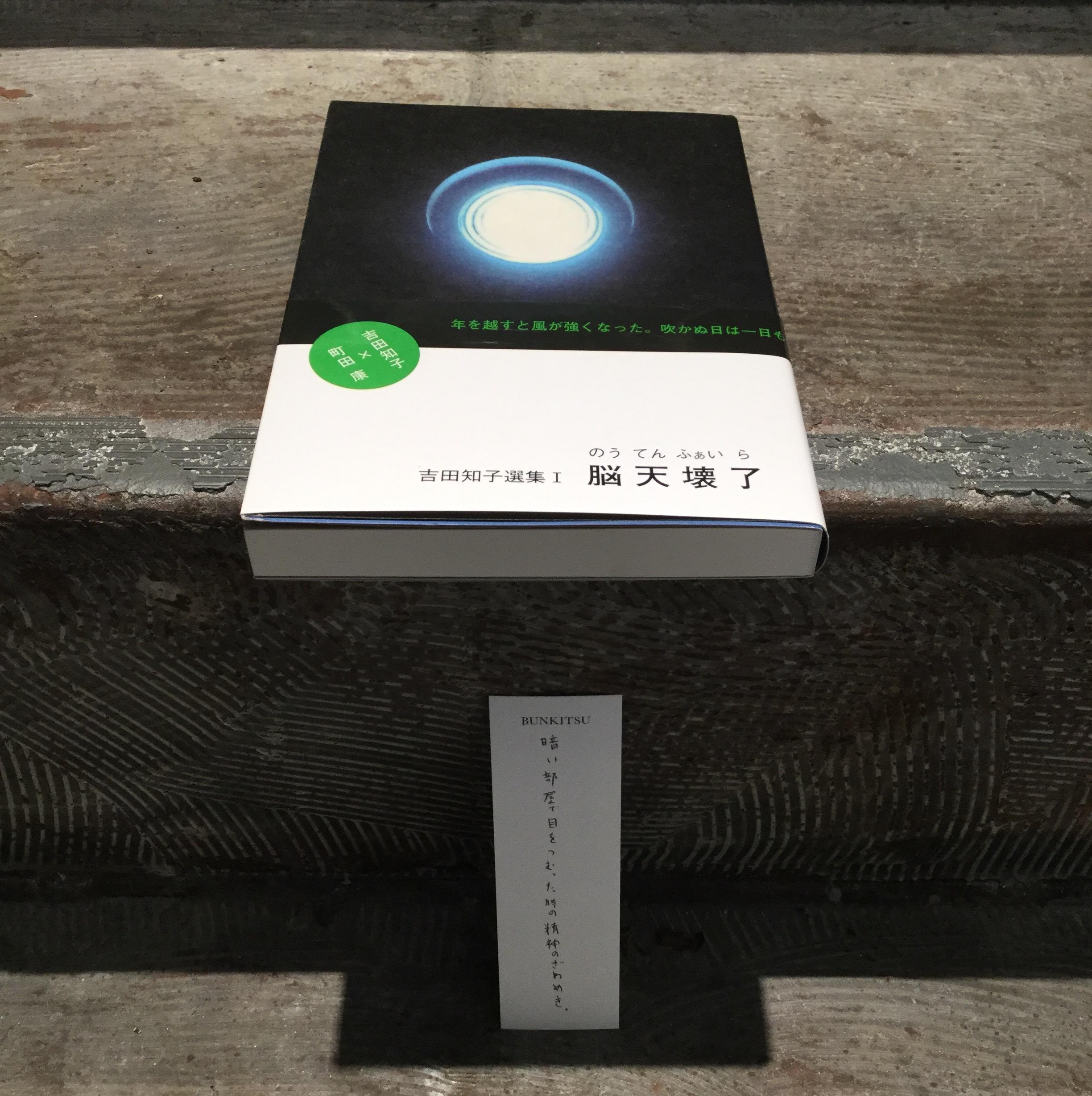 吉田知子『脳天壊了』(景文館書店)