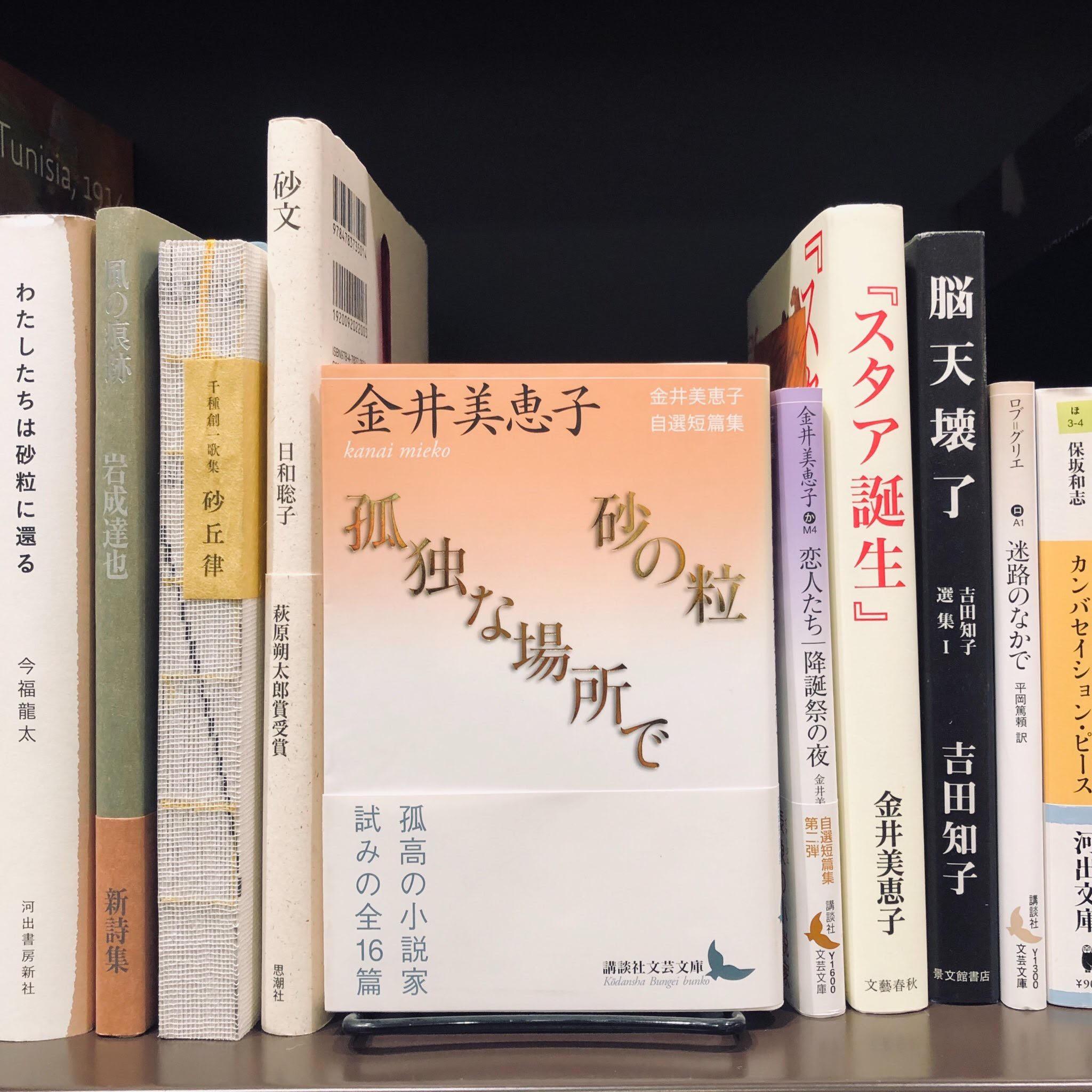 金井美恵子『砂の粒|孤独な場所』(講談社文芸文庫)