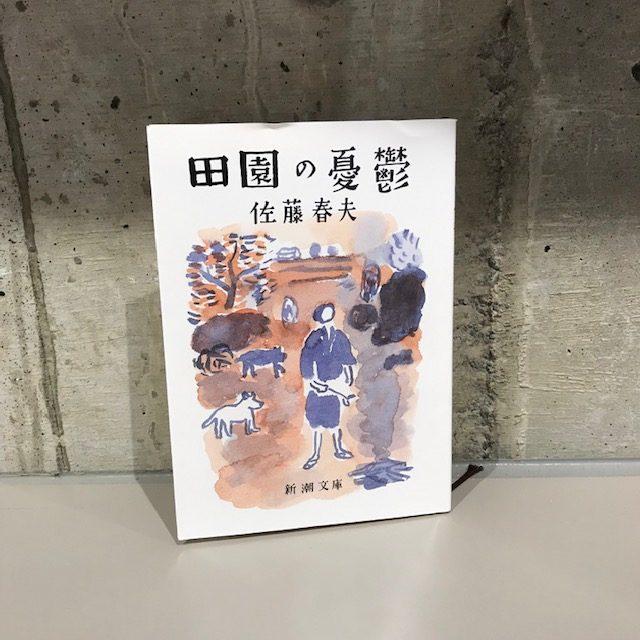 佐藤春夫『田園の憂鬱』(新潮社)